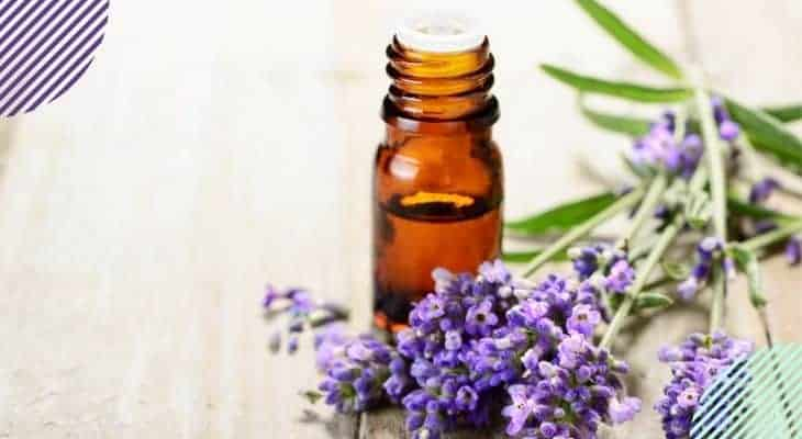 Dangers of Essential Oil Diffusers Everyone Needs to Know