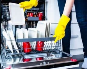 clean dishwasher drain hose without removing