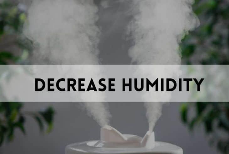 decrease humidiity