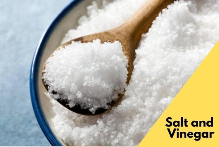 vinegar and salt for mattress